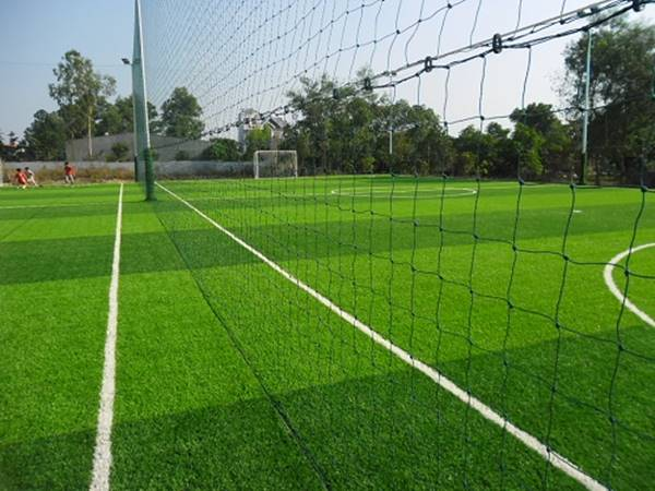 Hình dạng, độ dày, độ rộng, đặc tính và ưu điểm của cỏ nhân tạo