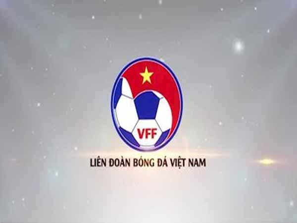 VFF là gì? Tổ chức này đóng vai trò như thế nào?
